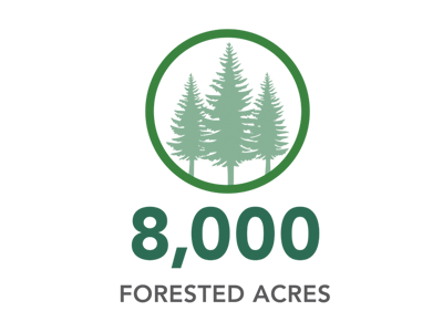 8,000 FORESTED ACRES